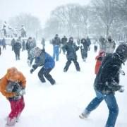 Snowball palle di neve