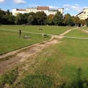 Görlitzer Park, https://pixabay.com/it/photos/g%C3%B6rlitzer-park-berlino-sentiero-439737/, jensjunge, CC0