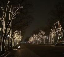 udl-lights1