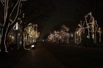 udl-lights3