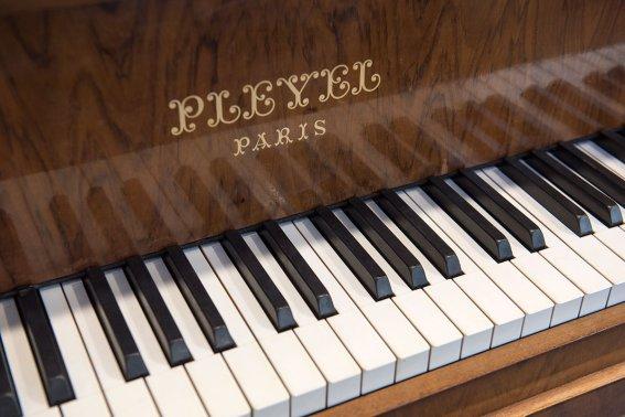 Pleyel06