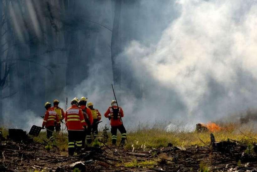 Bombeiros coíbem incêndios florestais e alertam para prevenção - Bernadete Alves