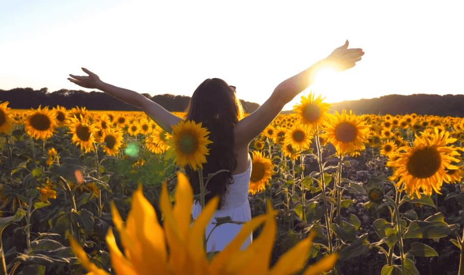 Setembro Amarelo - um giro pela vida -  Bernadete Alves