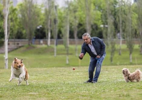 O novo presidente da Argentina Alberto Fernández com seus animais de estimação