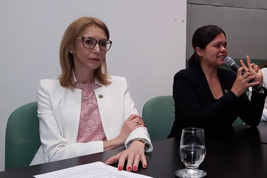 Empresas vão receber selo do MMFDH por apoio a família - Bernadete Alves