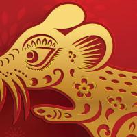 Ano Novo Chinêscarrega cultura e encanto ímpares