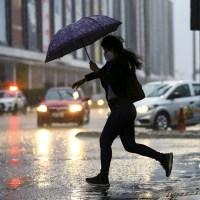 Chove em Brasília depois de 119 dias de estiagem e cheiro da terra desperta atenção