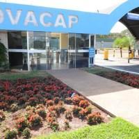 Novacap: 64 anos dedicados ao progresso de Brasília e a exuberância da natureza