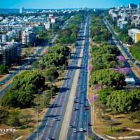 Brasília planta esperança e incentiva preservação do meio ambiente
