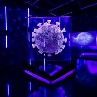 Coronavírus e seus impactos é tema da exposição no Museu do Amanhã