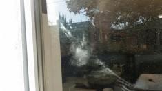 The amazing owl image on my mom's patio door