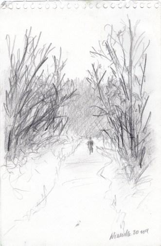 Thanksgiving Trail Walk