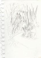 Trail Sketch