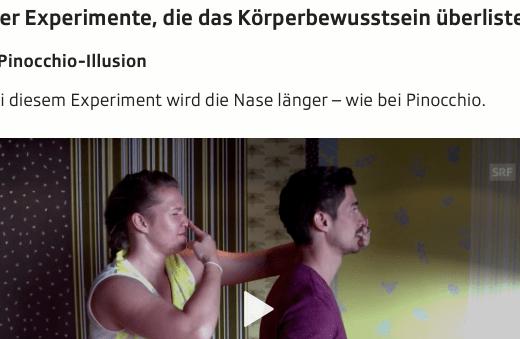 Screenshot Ausschnitt Artikel Illusionen