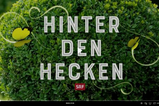 Screenshot TV-Sendung Hinter den Hecken 3