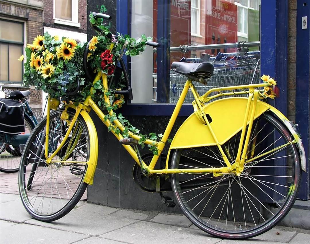 Picture b Village Bike
