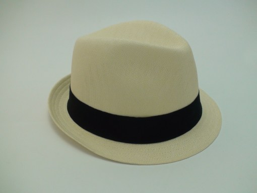 Stetson Vermont Mesh Hat Lightweight Polyester Fedora Tilby