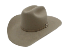 Stetson 5X Beaver Silverbelly Western Cowboy Hat