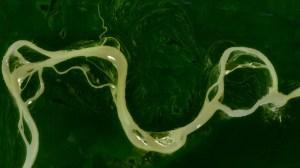Central_Amazon_River - wikimidia