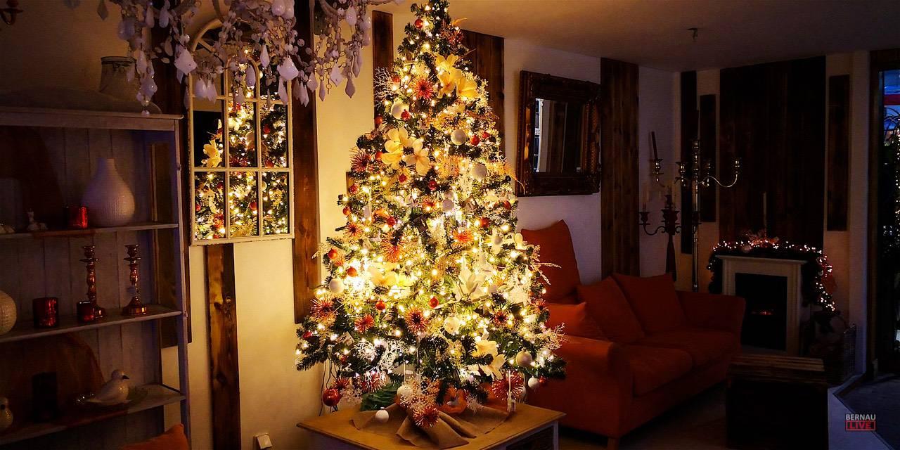 Mit dem Gartencenter Holland verlosen wir tolle Weihnachtsbäume