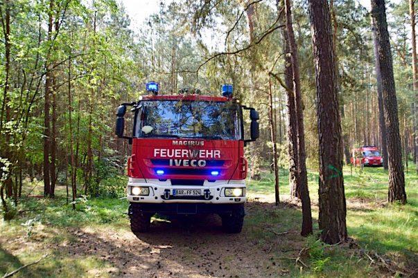 Update Waldbrand: Noch immer Einsatzkräfte in Ruhlsdorf/Marienwerder