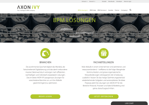 website_axon ivy_2