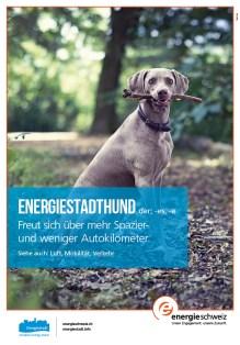 Cites_Hund_DE