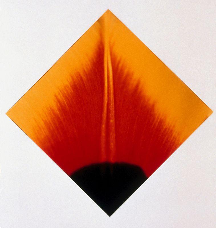 ohne Titel (018) - 1996