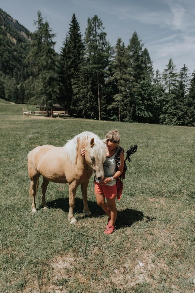 Pferde auf der Schartenalm –BergeSeen Trail