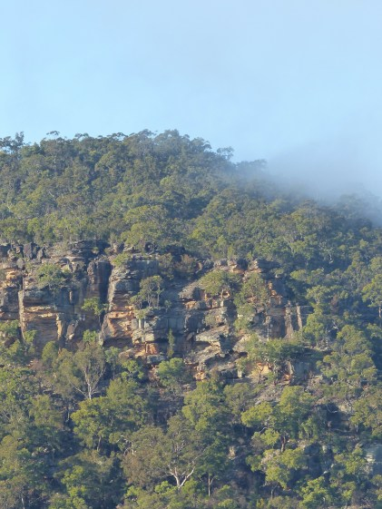 Muogamarra point in the morning mist