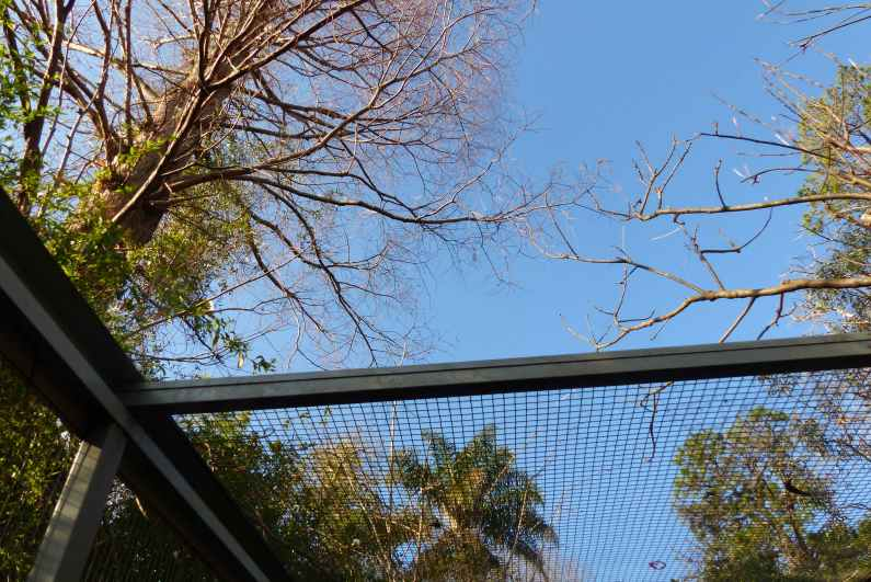 Sunroof on Colditz, the new chook cage