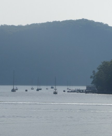 Sailing boats north of Dangar Island