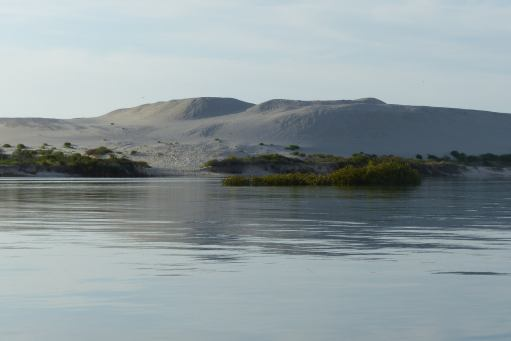 Sanddunes near the channel to the Myall River