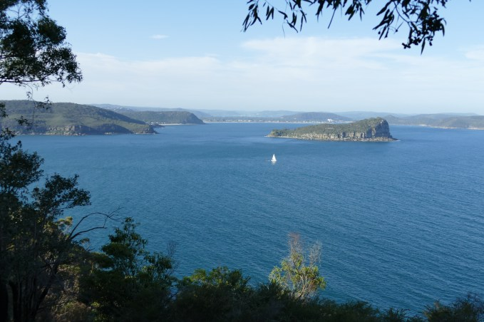 Lion island from west head