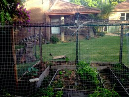 Possum trouble no more. Just wire up your rotary clothes line.