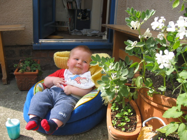 Rory in the garden