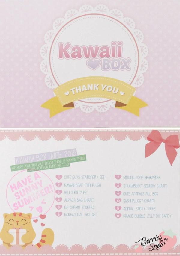 Kawaii Box June 2015