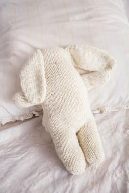 Bunny-6156