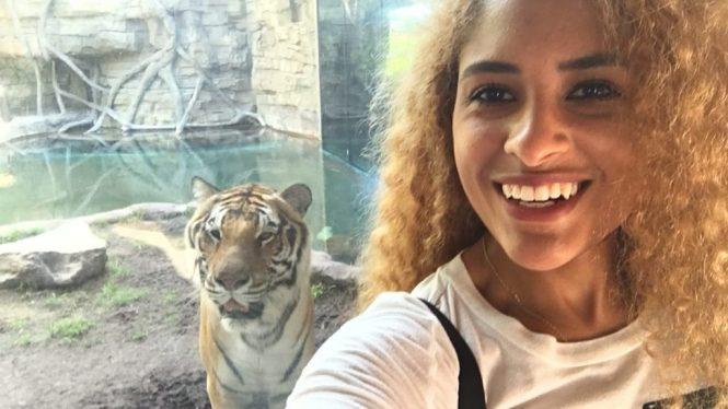 Bengal Tiger Selfie