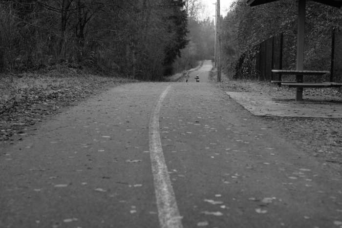 2018-01-02 Interurban Trail 12-37-59