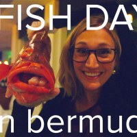 #Bermuda Fish Day @QKatie
