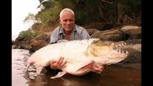 River Monsters Jeremy Wade Tiger Fish