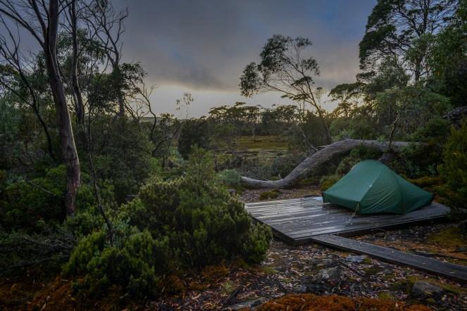 Tasmania-84