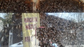 Polonezköy Beekeeping Museum