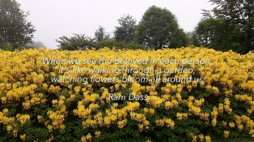 quote1.jpg