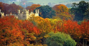 Image of Scottish castle surrounded by autumnal trees