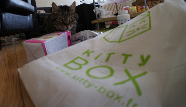 Test : KittyBox, une box pour chat !