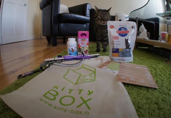 Diki et sa Kitty Box