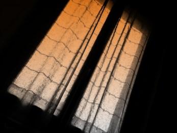 Jeudi 11 avril : la fenêtre de la maison