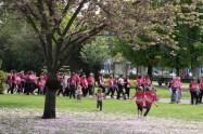 Vendredi, une photo prise sur le parcours de La Clermontoise, course 100% féminine. J'ai repéré cet arbre et ses fleurs au sol. J'ai donc attendu d'avoir le bon instant, comme ces petites filles qui courraient pour se rouler dans les fleurs.